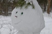 Что посмотреть в Рязани зимой