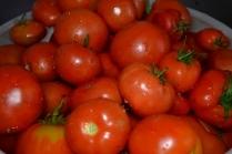 Как приготовить вяленые томаты в домашних условиях
